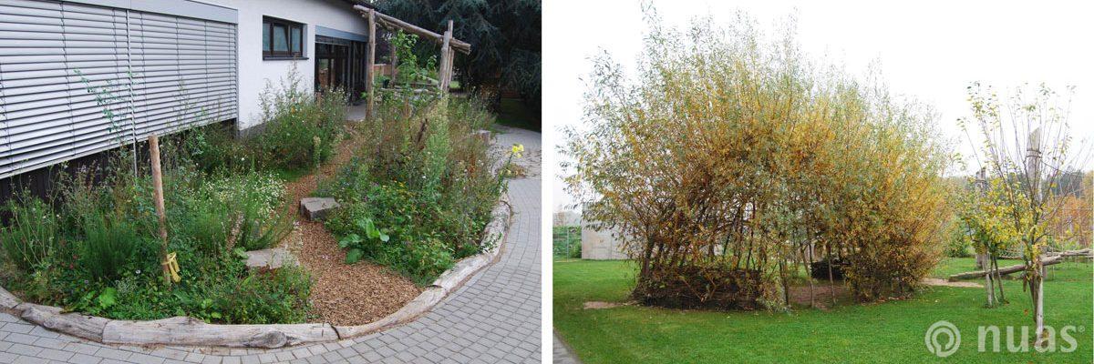 Duftbeet mit Robinienholzeinfassung und Weidenkuppel - nuas® für Landschaftsbauer