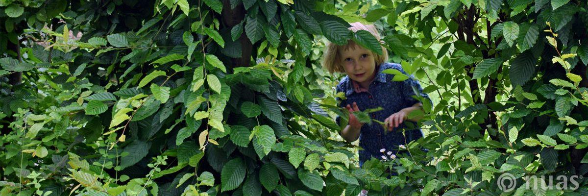 Das Kind ist Akteur seiner Entwicklung  - nuas® NaturSpielRäume