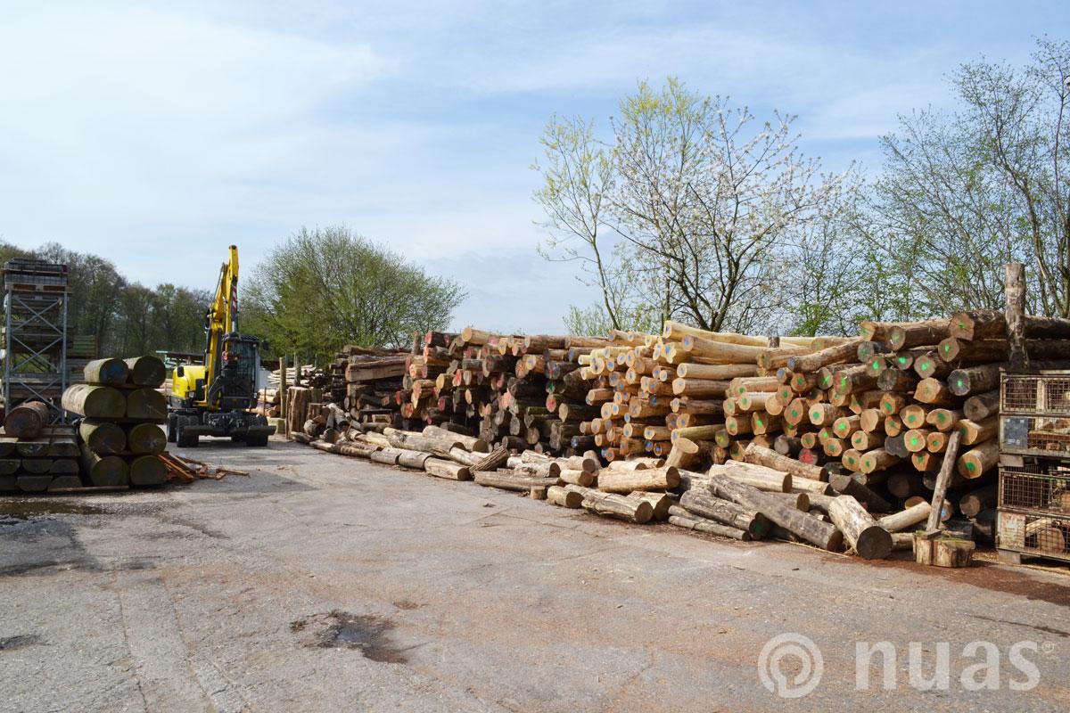 Stammholzlager in Combüchen - nuas® Verkauf Robinienstämme